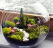 Benefits of terrarium workshop