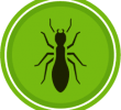 Pest control – the etiology, taxonomy, and obviation